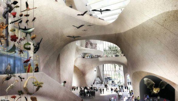 طراحی موزه تاریخ طبیعی آمریکا در نیویورک