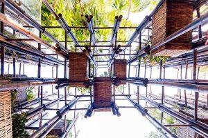 استفاده از چوب درخت بامبو در طراحی نردبان سبز استرالیا