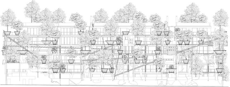 طراحی یک مجتمع مسکونی در تعامل با درختان سبز
