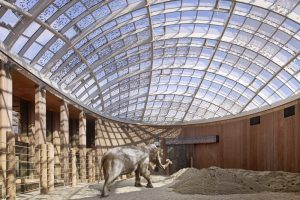 معماری برای حیوانات